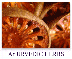 Ayurvedic Extracts