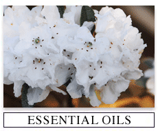 Medical Aromatherapy Oils